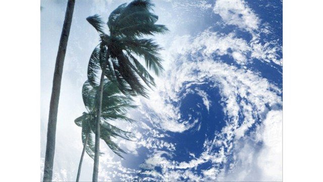 If Tropical Wave Harvey is Severe, BISD May Ask Staff to Stay Home Thursday and Friday