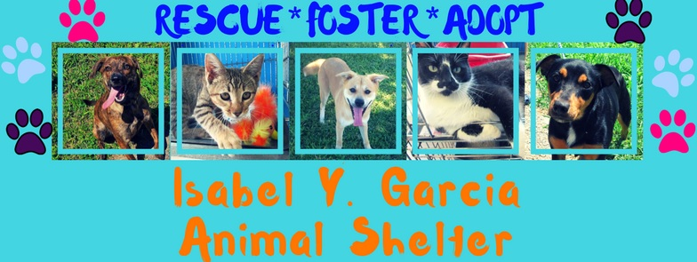 Clear the Shelters | KVEO-TV